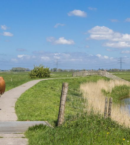 Provincie steunt investering Bouwman Hydrauliek in innovatieve draaibank